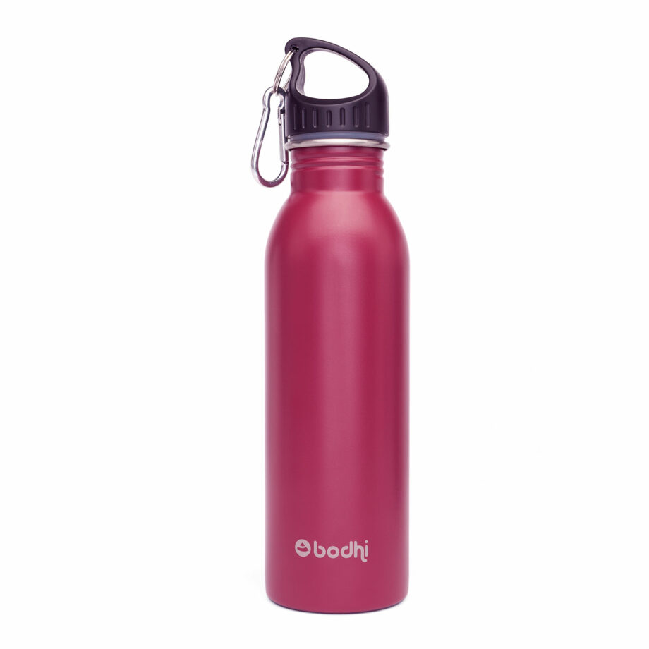 bouteille isotherme inox berry