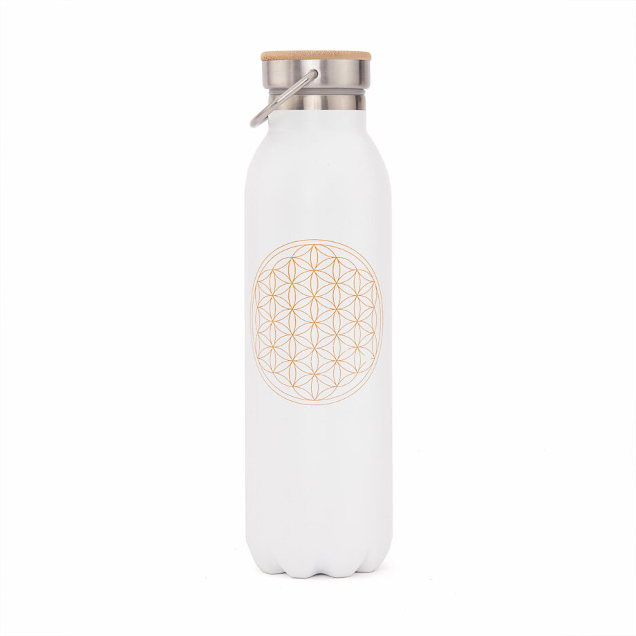 bouteille isotherme inox 600 ml blanc