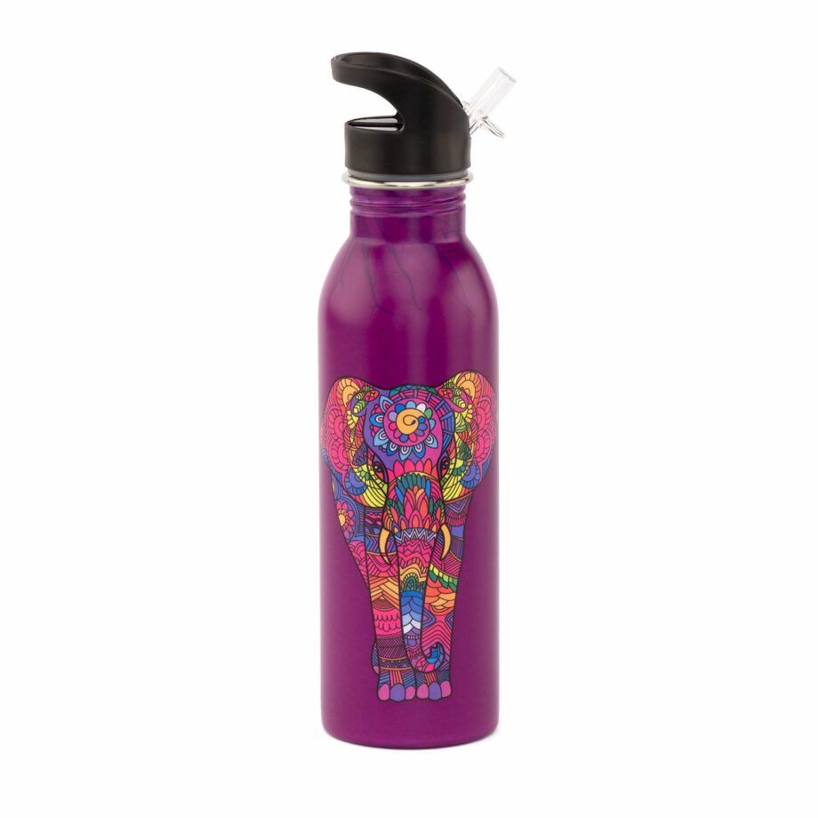 bouteille isotherme inox coloree 700 ml